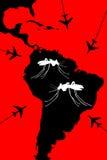 Zika lopp som varning Arkivbild