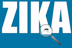 Zika mosquito Royalty Free Stock Images