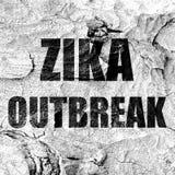 Zika virus concept background Royalty Free Stock Image