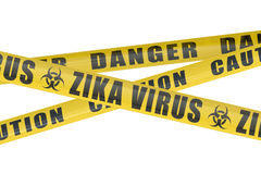 Zika virus concept Stock Photos
