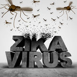 Zika Virus Danger Concept. As a 3D illustration text transforming to a group of swarming infectious mosquitos spreading disease as an outbreak epidemic public Stock Images