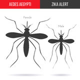 Zika virus graphic design elements. Zika alert banner, poster or flyer with male and female aegypti aedes mosquitoes silhouettes. High quality graphic design Royalty Free Stock Image