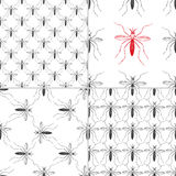 Zika virus graphic design elements. Set of four seamless patterns with aedes mosquitos. Texture of insects.  Healthcare concept. Pattern warning about dangerous Stock Image