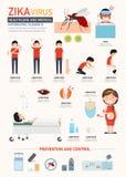 Zika virus infographics.vector Stock Photography