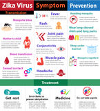 Zika virus infographics, vector Stock Photos
