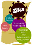 Zika virus. Stock Images