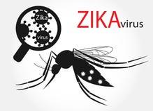 Zika virus Stock Photos