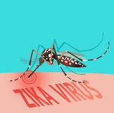 Zika Virus Outbreak Alert concept. Mosquito sucking blood. Mosquito Editable Under The Red Circle. Zika Virus. Baby Zika Virus. Outbreak Alert Concept. Against Royalty Free Stock Photography