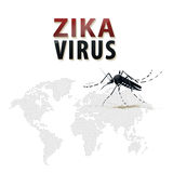 Zika virus outbreak in the world. Royalty Free Stock Images