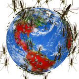 Zika Virus Spreads Globally Royalty Free Stock Images