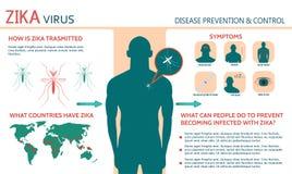 Zika-Virus-Symptome infographics Lizenzfreie Stockfotografie