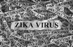 Zika virus. Torn pieces of paper with the words . Concept Image. Black and White. Closeup Stock Photography