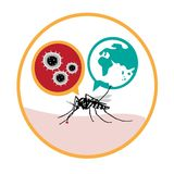 Zika Virus. Vector Illustration concept of the Zika Virus in europe Royalty Free Stock Images