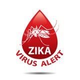 Zika-Virusikone moskito Baby zika Virusikone Ausbruch-wachsames Konzept Stockfotos