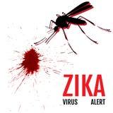 Zika virusvarning Mygga med uttryck Royaltyfri Bild