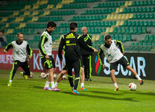 ZILINA,斯洛伐克- 2014年10月8日:西班牙国家队球员 库存图片