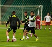 ZILINA,斯洛伐克- 2014年10月8日:西班牙国家队球员 库存照片