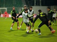 ZILINA SLOVAKIEN - OKTOBER 8, 2014: Spanien landslagspelare royaltyfri bild