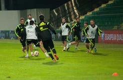 ZILINA, SLOVAQUIE - 8 OCTOBRE 2014 : Joueurs d'équipe nationale de l'Espagne Images libres de droits