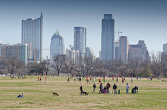 Zilker park in Ausitn Stock Photography