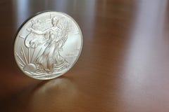 Zilveren Adelaar Royalty-vrije Stock Foto