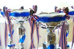 Zilveren & Blauwe metaaltrofee royalty-vrije stock foto's