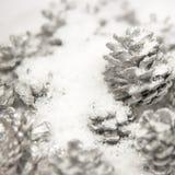 Zilveren Denneappels in de Witte Sneeuw Royalty-vrije Stock Afbeeldingen