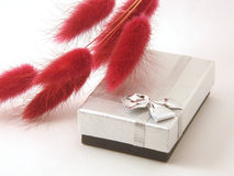 Zilveren doos Royalty-vrije Stock Afbeelding