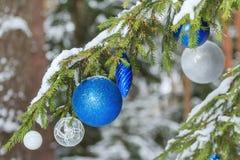 Zilveren en blauwe ornamenten van Kerstmis vertakt de feestelijke glanzende snuisterijen zich buiten op sneeuwspar Royalty-vrije Stock Afbeeldingen