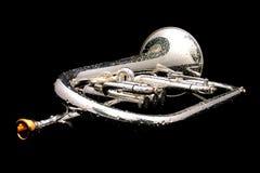 Zilveren fluegelhorn in nacht stock afbeeldingen