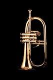 Zilveren fluegelhorn in nacht stock afbeelding