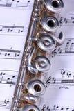 Zilveren fluitinstrument Royalty-vrije Stock Fotografie