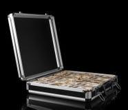 Zilveren geval met geld stock fotografie