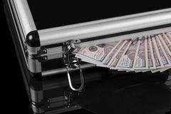 Zilveren geval met geld stock foto