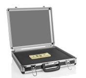 Zilveren geval met geld stock afbeelding