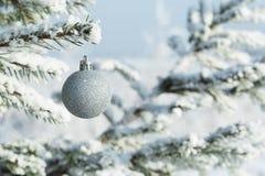 Zilveren Kerstmisballen die op een tak van spar hangen Royalty-vrije Stock Afbeelding