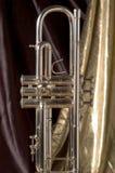 Zilveren Kleppen op Goud royalty-vrije stock foto's