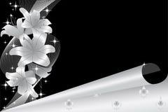 Zilveren lelie 2 Royalty-vrije Stock Afbeeldingen