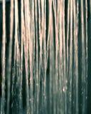 Zilveren lichte douche Royalty-vrije Stock Afbeelding