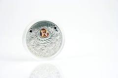 Zilveren muntstuk Stock Foto