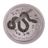 Zilveren muntstukjaar van de slang Stock Foto