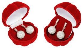 Zilveren oorringen in mooie kisten - shells Stock Foto