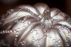 Zilveren pompoen Royalty-vrije Stock Afbeelding