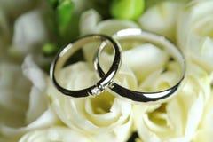 Zilveren ringen op rozen royalty-vrije stock fotografie