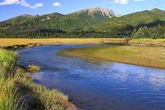 Zilveren Salmon Creek Lake Clark National-Park stock afbeelding