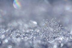 Zilveren sneeuwvlok Stock Foto