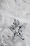 Zilveren sterren op de boom in de sneeuw Royalty-vrije Stock Afbeelding