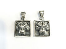 Zilveren tegenhanger royalty-vrije stock afbeelding