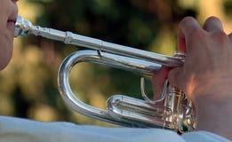 Zilveren trompet Stock Foto