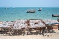 Zilveren vissen die in rekken naast het overzees in Thailand drogen Stock Afbeeldingen